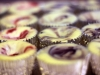 Fruit Swirl Cheesecake Cupcakes